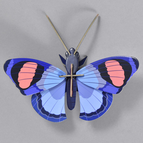 Peacock Butterfly Wall Decor