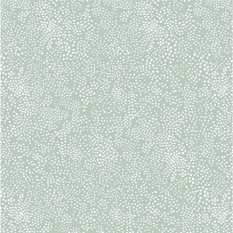 RIFLE PAPER CO Basics, MENAGERIE CHAMPAGNE in Mint,  ELEGANTE VIRGULE CANADA, CANADIAN FABRIC SHOP, QUILT SHOP, QUILTING COTTON