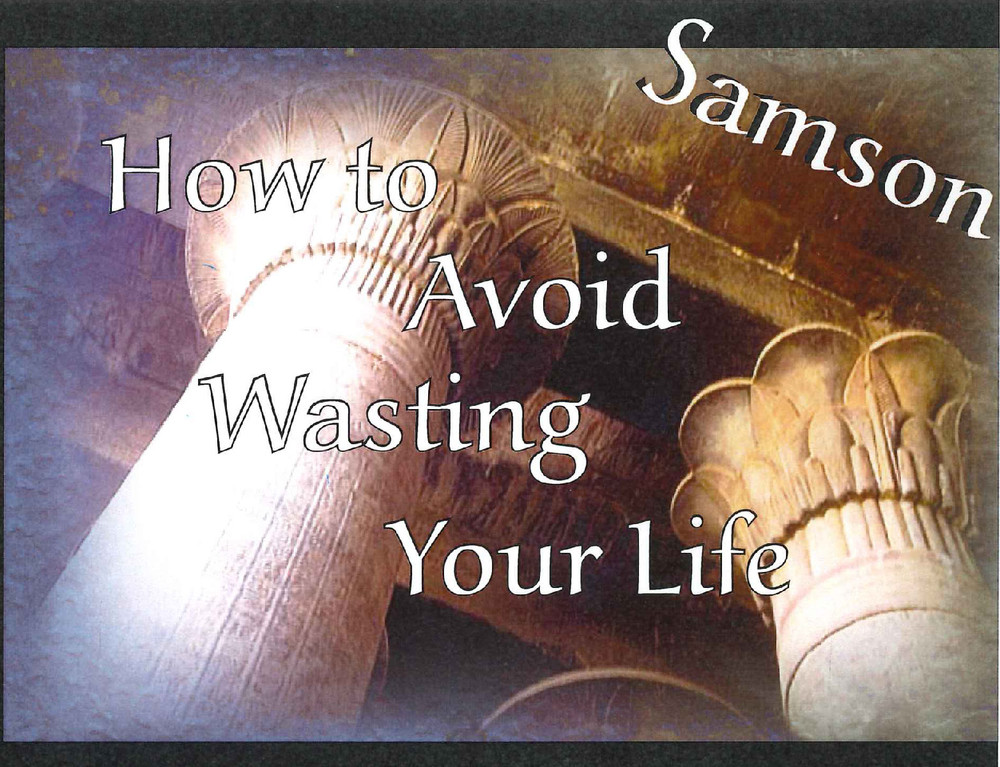 Samson:  How to Avoid Wasting Your Life - CD Series