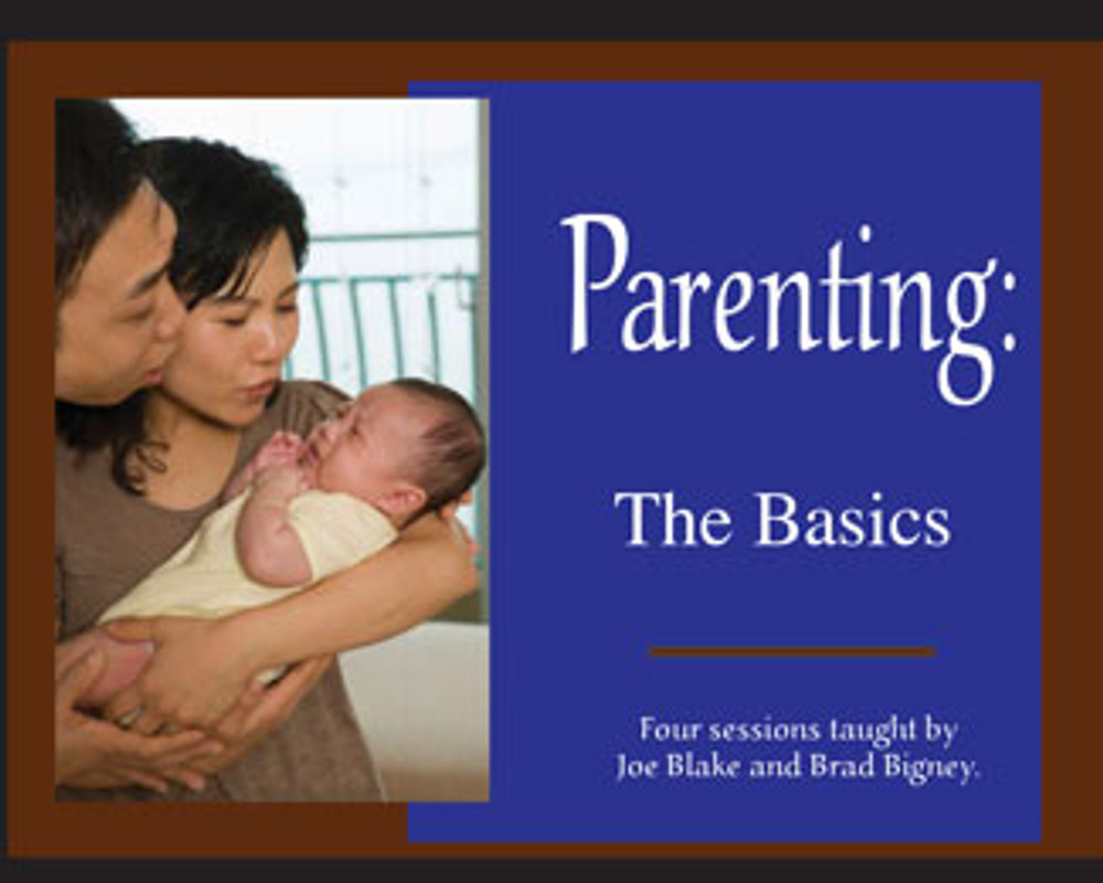 Parenting:  The Basics MP3 Series