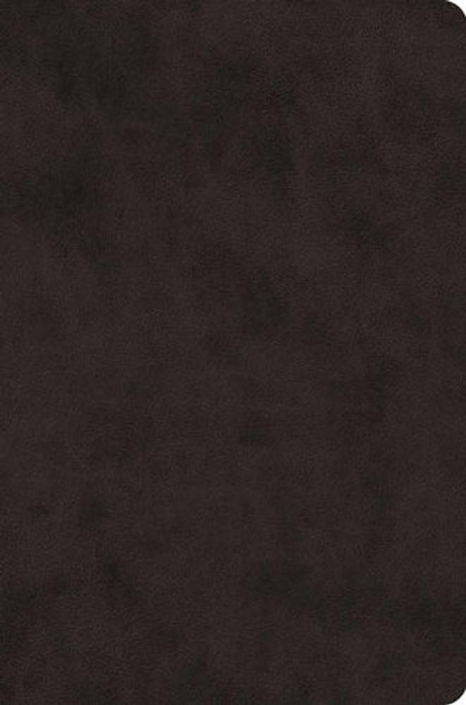 ESV Value Compact Bible  (TruTone, Black)