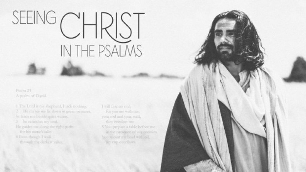 Seeing Christ in the Psalms MP3 series