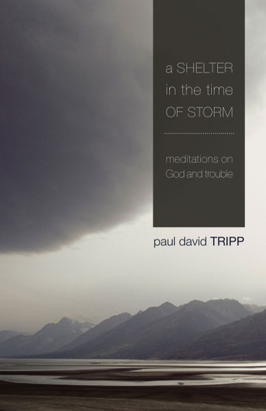 Shelter in the Time of Storm eBook