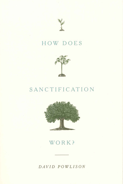 How Does Sanctification Work eBook