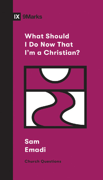 What Should I Do Now That I'm A Christian