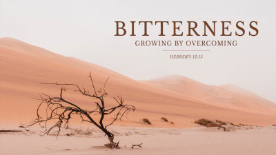 Growing by Overcoming Bitterness MP3 Series