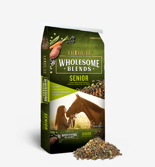 Wholesome Blends Senior