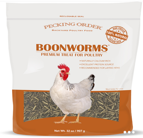 Dried Boonworms