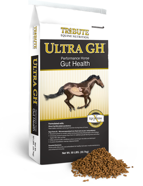 Equine Ultra GH®