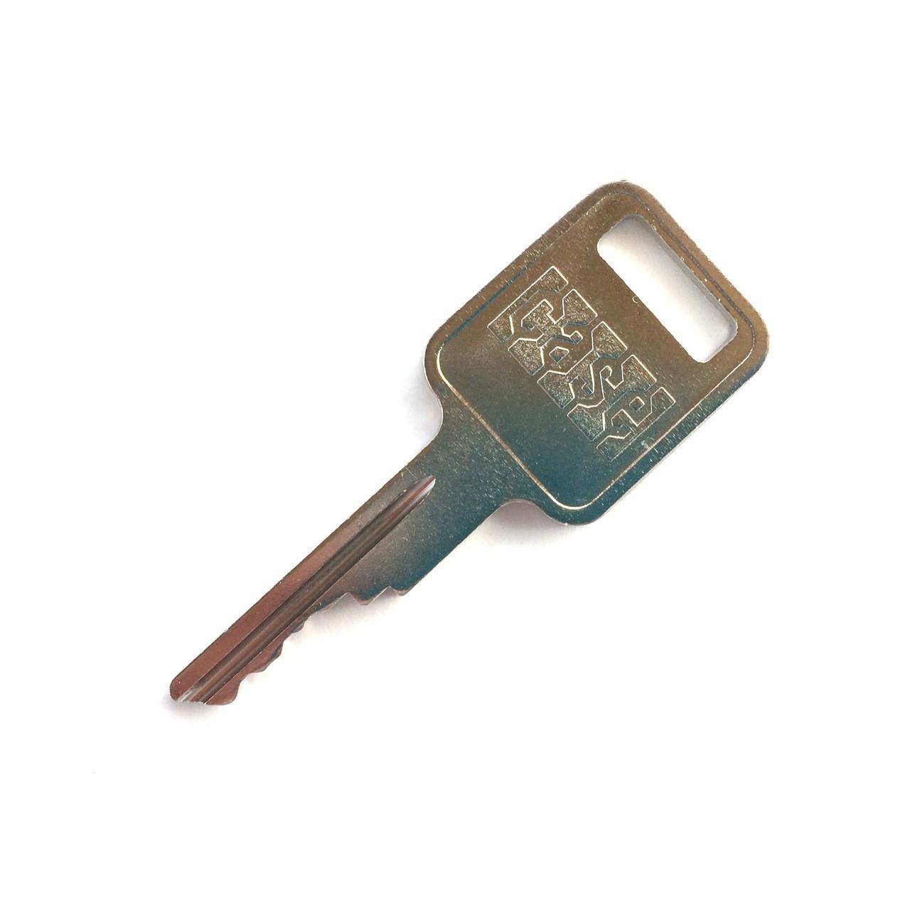 Case  A77313 Key