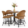 Empire Outdoor Wicker 5 Piece Counter Height Set