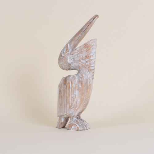 Indoor Pelican