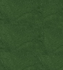Crayon Green #47