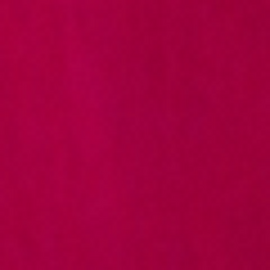 Fuchsia #8