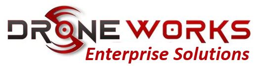 dw-enterprise-logo.jpg