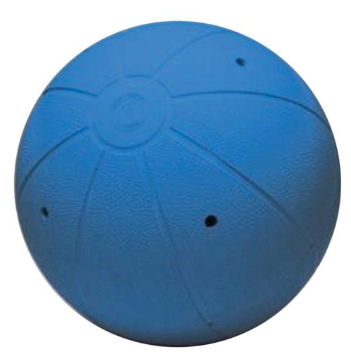 Official Goalball