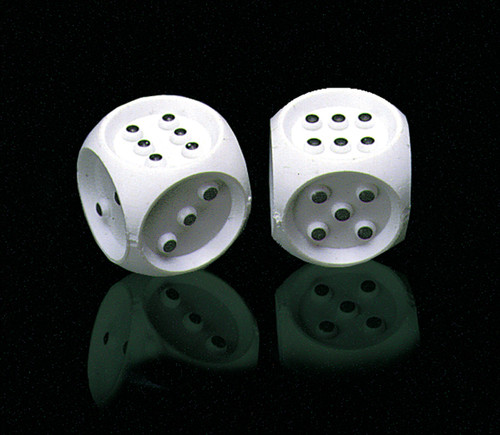 Brailled Dice - Set of 2 Dice