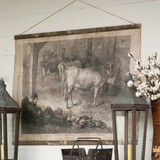 Prized Cow Exhibition Rolled Printed Canvas