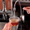 InSinkErator GN1100 Boiling Water Tap