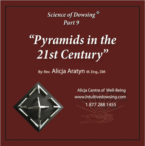 Pyramids in the 21 Century