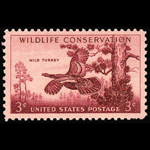 1956  3c Wild Turkey Mint Single