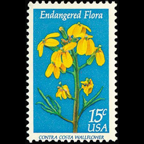 1979 15c Wallflower Mint Single