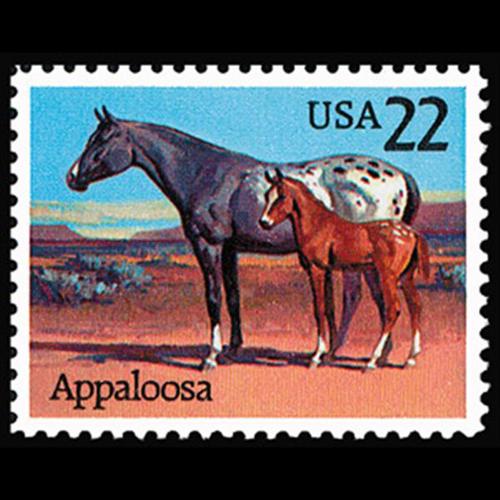 1985 22c Appaloosa Mint Single