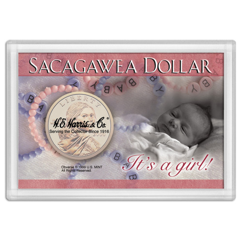 Frosty Case 2X3 Sacagawea Its A Girl