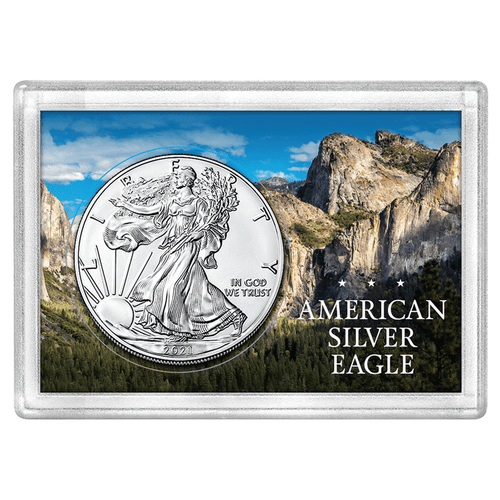 American Silver Eagle 2x3 Frosty Case, Mountain Forest