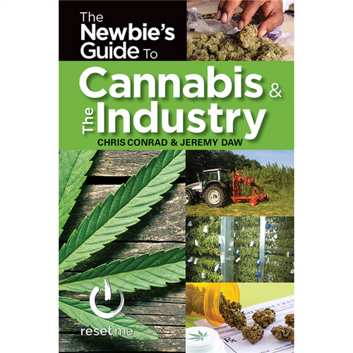 The Newbie's Guide to Cannabis & The Industry