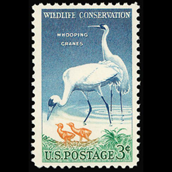 1957 3c Whooping Cranes Mint Single