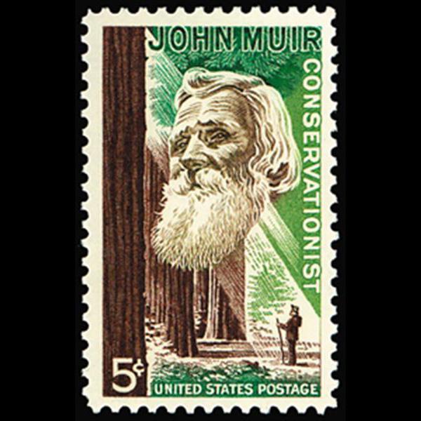 1964 5c John Muir Mint Single