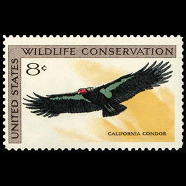 1971 8c Condor Mint Single