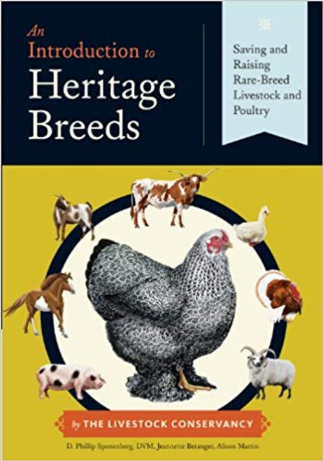 An Introduction to Heritage Breeds - Saving and Raising Rare-Breed Livestock and Poultry by D. Phillip Sponenberg - Hardcover (9781612121307)
