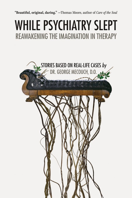 While Psychiatry Slept: Reawakening the Imagination in Therapy by Dr. Dr. George Mecouch - Paperback
