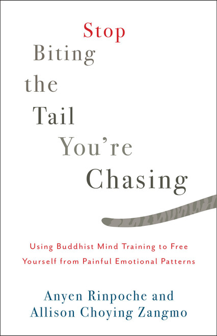 Stop Biting the Tail You're Chasing: Using Buddhist Mind Training to Free Yourself from Painful Emotional Patterns by Anyen Rinpoche & Allison Choying Zangmo - Paperback