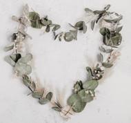 Terpene Tuesday: Phellandrene