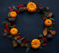 Supporting Fall's Transitions