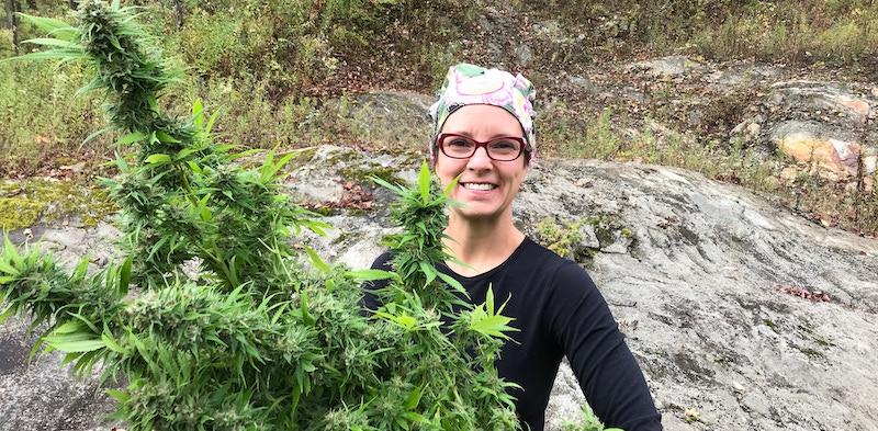 Cannabis Nurse, Farmer, and Herbalist, Jessilyn harvesting organic hemp.