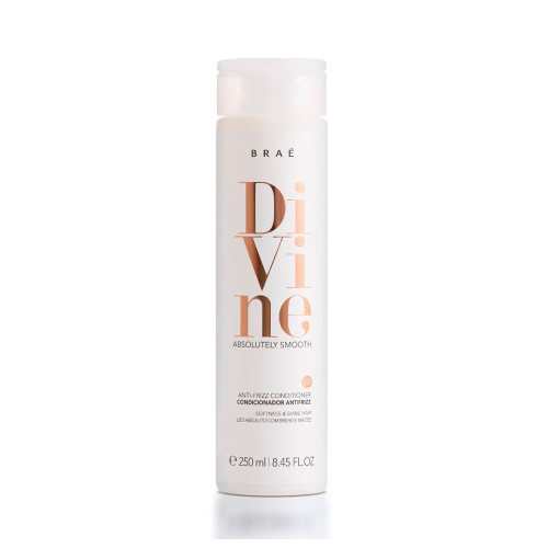 Braé Divine Smooth Anti-Frizz Conditioner Absoluty Smooth Blend of Vegetable Extracts Moisturizing Nourishment Shine and Softness 250ml/8.45 fl.oz