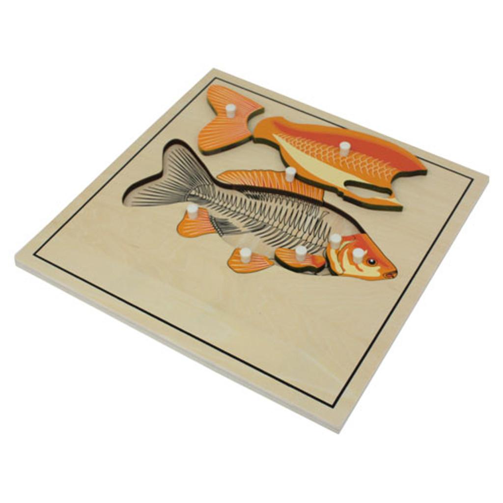 Fish Skeleton Puzzle