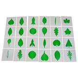 Leaf Cards