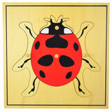 Ladybug Puzzle