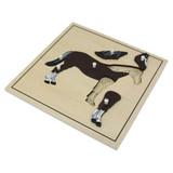 Horse Skeleton Puzzle