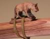 Hand Carved Fetish - Walnut Mountain Lion