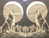 Wolf Blanket Poncho