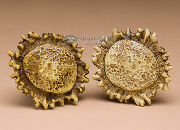 Pair of faux antler knob pulls.