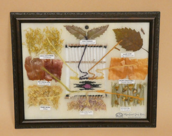 Natural dyes made from plants for weaving.