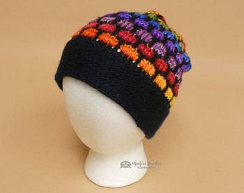 Multi Colored Alpaca Beanie