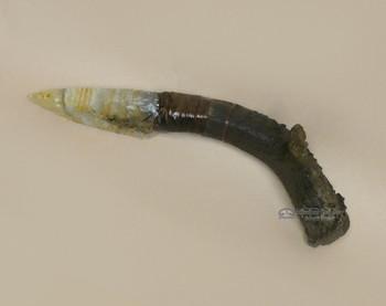 Creek Indian Antler Handled Stone Knife